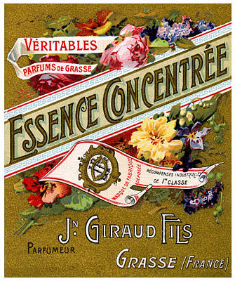 Painting - 1915 Essence Concentree French Perfume by Historic Image