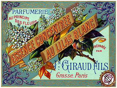 Painting - 1915 French White Lilac Perfume by Historic Image
