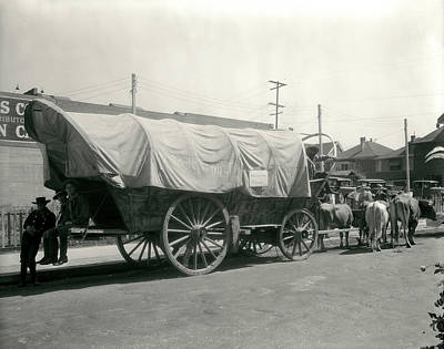 Conestoga Photograph - 1920s Ox Drawn Conestoga Covered Wagon by Vintage Images