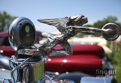 Photograph - 1928 Packard Hood Ornament by John Telfer