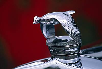 Mascot Photograph - 1931 Ford Quail Hood Ornament by Carol Leigh
