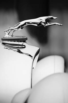 Photograph - 1931 Lincoln K Hood Ornament -1837bw by Jill Reger