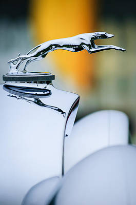 Photograph - 1931 Lincoln K Hood Ornament -1837c by Jill Reger