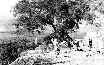 Photograph - 1934 Hateen Village by Munir Alawi