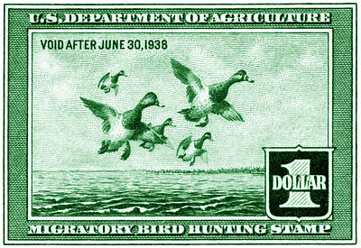 1937 American Bird Hunting Stamp Art Print by Historic Image