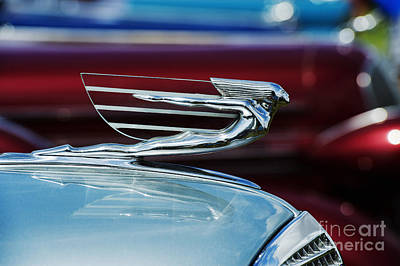 1937 Cadillac Hood Ornament Art Print by Tim Gainey