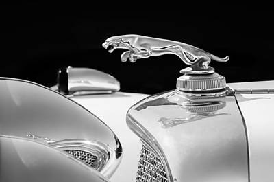 Photograph - 1937 Jaguar Prototype Hood Ornament -386bw46 by Jill Reger