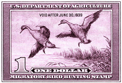 1938 American Bird Hunting Stamp Art Print by Historic Image
