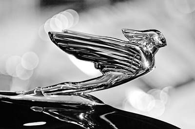 Photograph - 1938 Cadillacv-16 Hood Ornament by Jill Reger