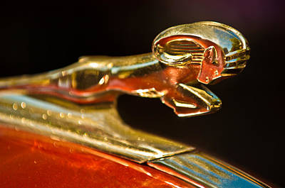Historic Vehicle Photograph - 1939 Dodge Business Coupe V8 Hood Ornament by Jill Reger