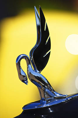 Cormorant Photograph - 1939 Packard Hood Ornament by Jill Reger
