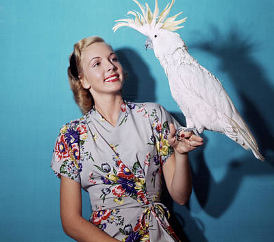 Cockatoo Photograph - 1940s 1950s Portrait Blond Woman by Animal Images