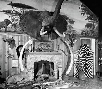 Mural Photograph - 1940s 1950s Room With Big Game Trophies by Vintage Images