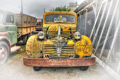 Old Trucks Photograph - 1946 Dodge Truck by Daniel Hagerman
