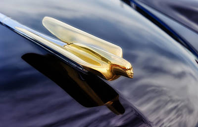 Photograph - 1949 Cadillac Goddess Hood Ornament - R by Frank J Benz
