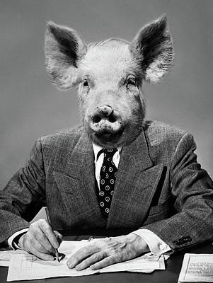 Pig Photograph - 1950s 1960s 1970s Montage Of Pig Headed by Vintage Images