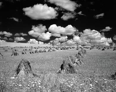 1950s Farm Scene With Stacks Art Print