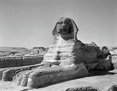 African Resort Photograph - 1950s The Sphinx At The Giza Pyramids by Vintage Images