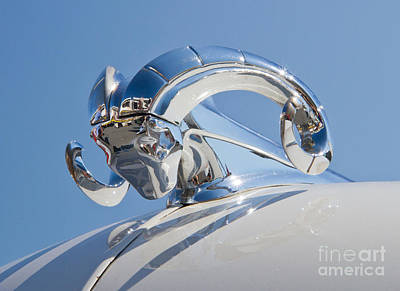 Photograph - 1951 Dodge Hood Ornament by Kevin McCarthy