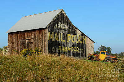 Mail Pouch Barn Photograph - 1951 Ford Pick Up Truck At The Barn by Paul Ward