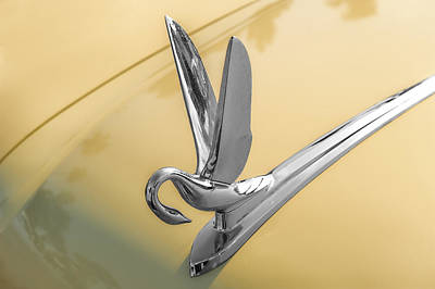 Photograph - 1951 Packard Hood Ornament by Frank J Benz
