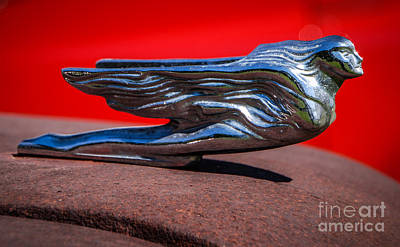 Photograph - 1952 Dodge Pickup Hood Ornament by Grace Grogan