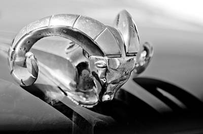 Photograph - 1952 Dodge Ram Hood Ornament by Jill Reger