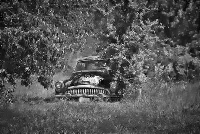 Photograph - 1953 Buick - Field Of Dreams 1 In B/w by Greg Jackson