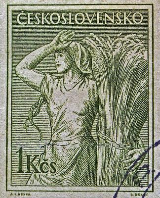 Photograph - 1954 Czechoslovakian Farm Woman Stamp by Bill Owen