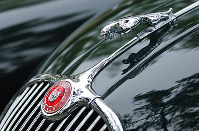 Jaguar Xk 150 Hood Ornament  Art Print by Jill Reger