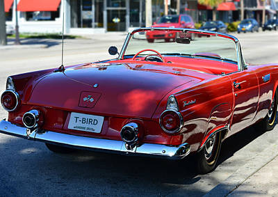 Photograph - 1955 T-bird by Laura Fasulo