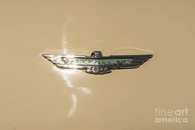Photograph - 1956 Ford Thunderbird Dsc1392 by Wingsdomain Art and Photography