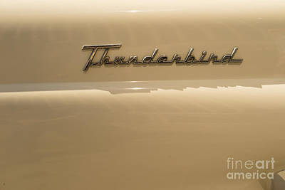 Photograph - 1956 Ford Thunderbird Dsc1396 by Wingsdomain Art and Photography