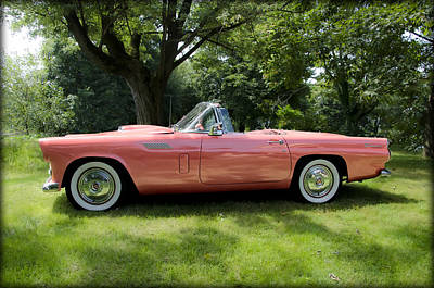 Classic Photograph - 1956 Thunderbird - Pink by Bill Cannon