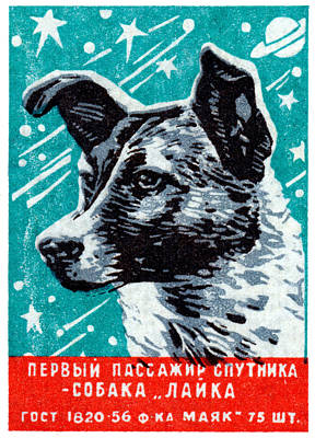 Painting - 1957 Laika The Space Dog by Historic Image