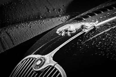 Photograph - 1960 Jaguar Xk 150s Fhc Hood Ornament -0441bw by Jill Reger