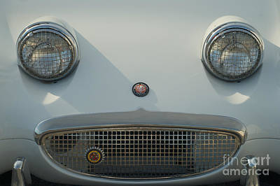 Photograph - 1961 Austin Healy Sprite Smiling At You by Mark Dodd