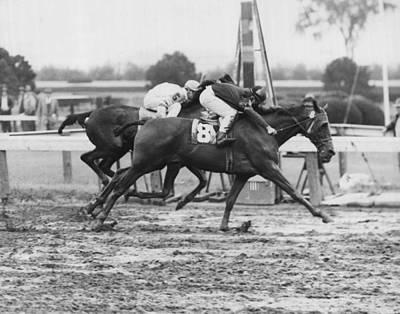 1966 Vintage Horse Racing Art Print