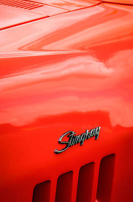 1969 Photograph - 1969 Chevrolet Corvette Roadster 427 Side Emblem -0660c by Jill Reger