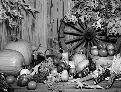 1970s Still Life Of Fall Harvest Fruits Art Print