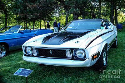 Photograph - 1973 Ford Mustang Mach 1 by Grace Grogan