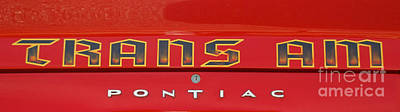 Photograph - 1973 Pontiac Trans Am Logo by Mark Dodd