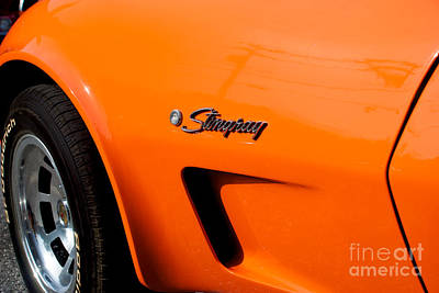 Photograph - 1975 Chevy Corvette Stingray by Mark Dodd