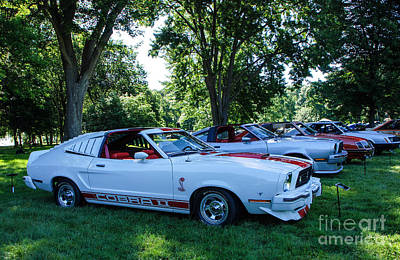 Photograph - 1977 Ford Mustang II Cobra II by Grace Grogan
