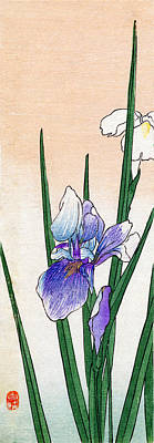 Painting - 19th C. Japanese Iris by Historic Image