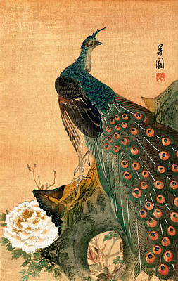 Painting - 19th C. Japanese Peacock by Historic Image