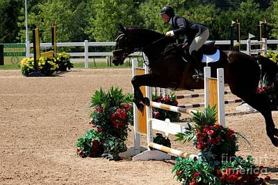 Photograph - 1jumper137 by Janice Byer