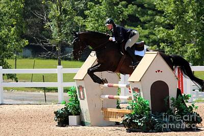 Photograph - 1jumper139 by Janice Byer