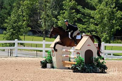 Photograph - 1jumper145 by Janice Byer