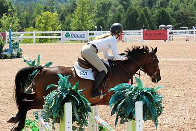 Photograph - 1jumper156 by Janice Byer
